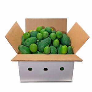 Cropeat-pack-guacamole-3