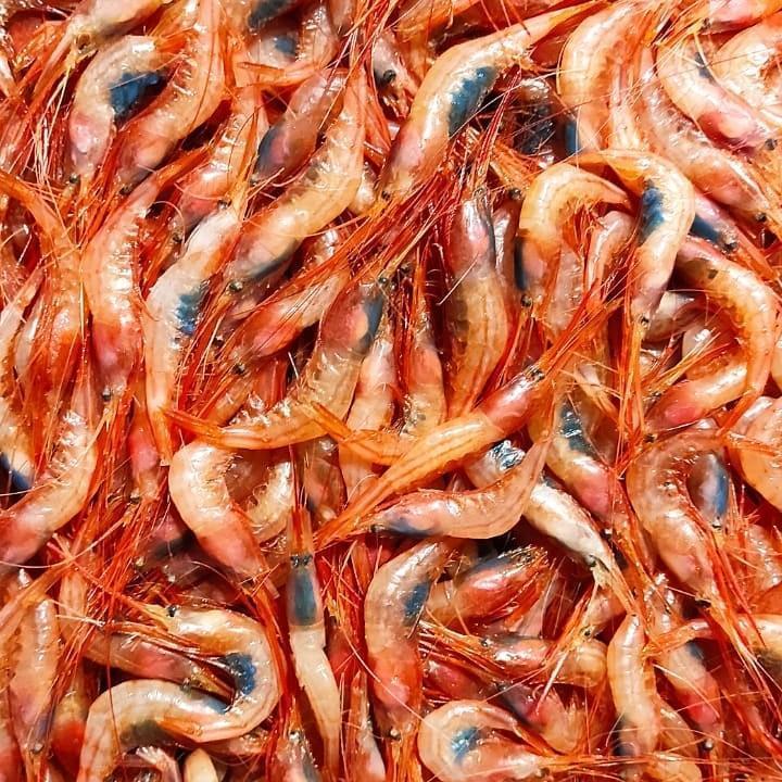 Pescados de Lonjas