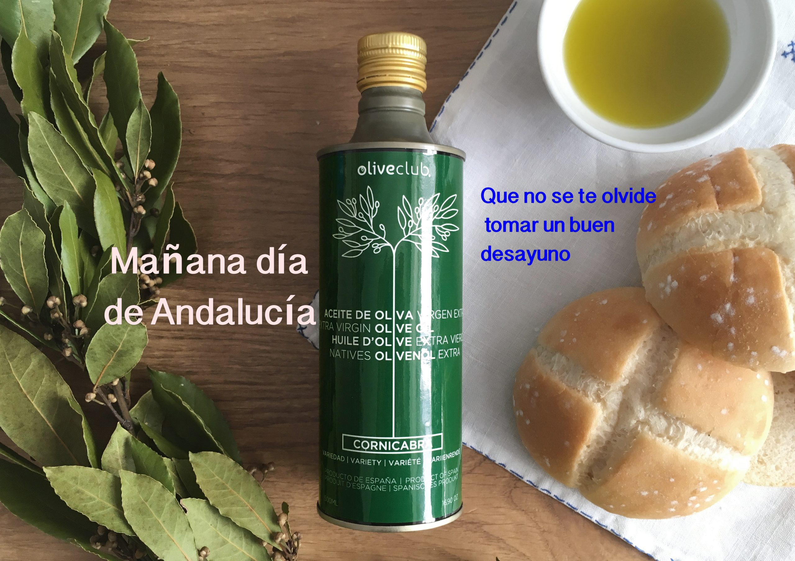Oliveclub