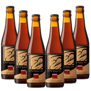 6 cervezas artesanas Enigma Origen